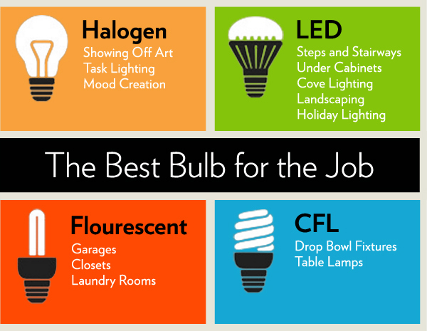 Best Bulbs for the Job