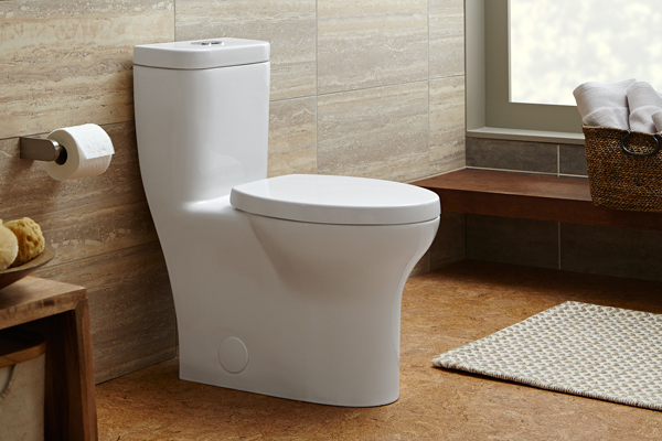 One-piece toilet in a home's bathroom