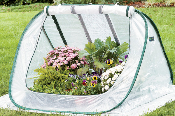 "Instant greenhouse"" /></p> <br />This pop-up plant and seedling protector helps you start seeds early and keep plants growing late, allowing you to <a class="