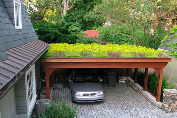 What Plants Will Grow Under A Deck : The green rooftop port