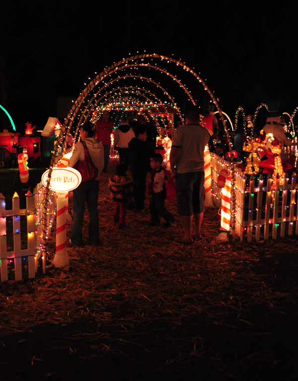 Visitors checking out the Smith Christmas lights in Delaware