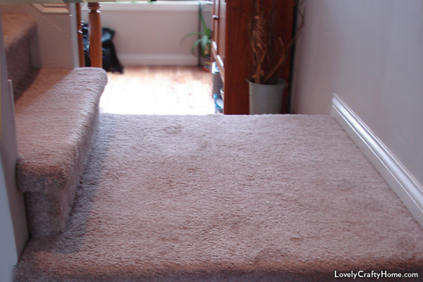 Carpet before