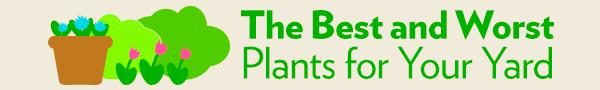Landscape Planning banner