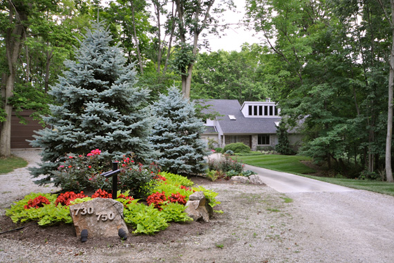 Best trees to plant trees for landscaping houselogic for Plants around trees landscaping