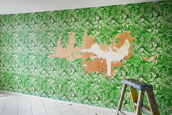 Best way to remove wallpaper wallpaper removal tips for Home wallpaper removal tips