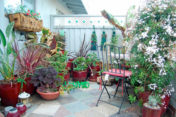 Patio container water garden ideas native home garden design for Small area planting ideas
