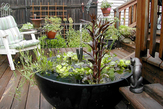 Live play twin cities the art of container gardens for Container garden ideas