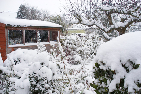 Winter Snow Covering a Garden | Cottage Gardens