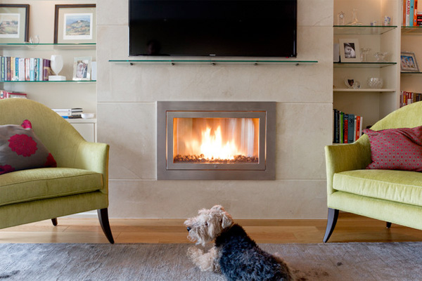 Family dog sitting by gel fireplace