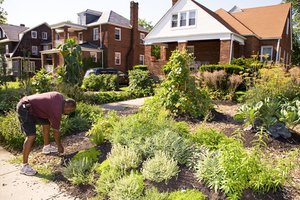 Edible Estates Regional Prototype Garden #6: Baltimore