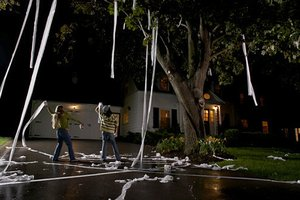 Kids toilet papering a yard