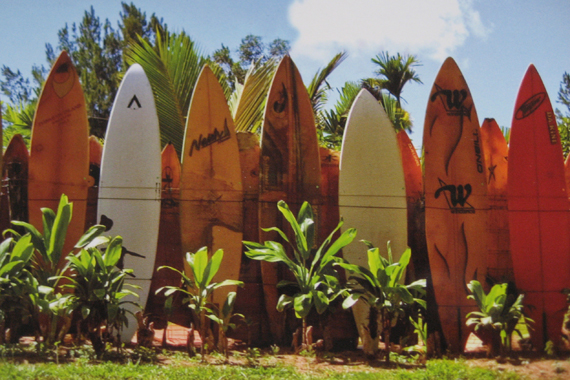 Fence made out of surfboards in Maui, Hawaii