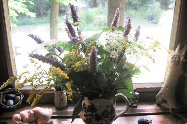 Anise hyssop will keep your home smelling nice