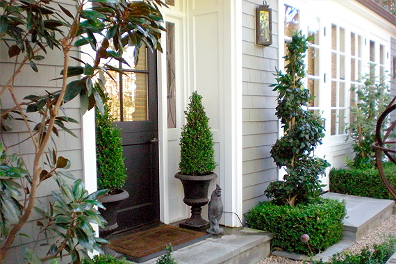 Boxwood in planters at front entry