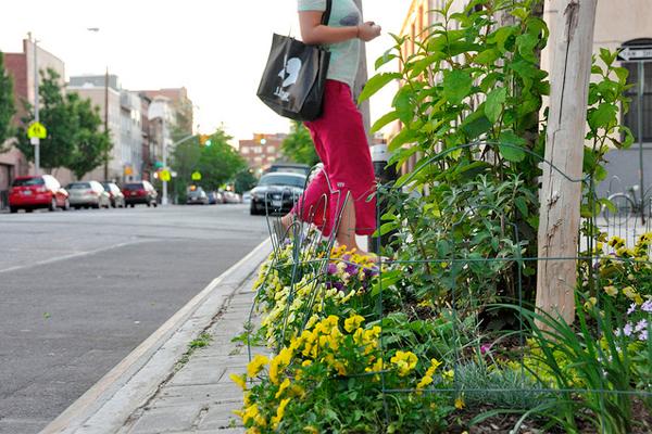 Person passing by guerrilla garden