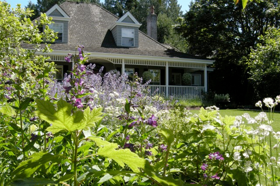 Perennials for Curb Appeal | Home Improvement Best Projects