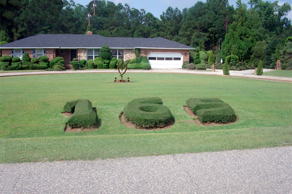 Topiary House Numbers in a Front Yard | House Numbers