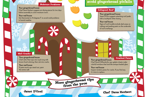 Snapshot from gingerbread house infographic