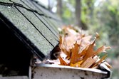 Leaves clogging a home&#39;s gutter