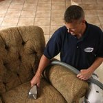 Professional cleaning upholstered chair