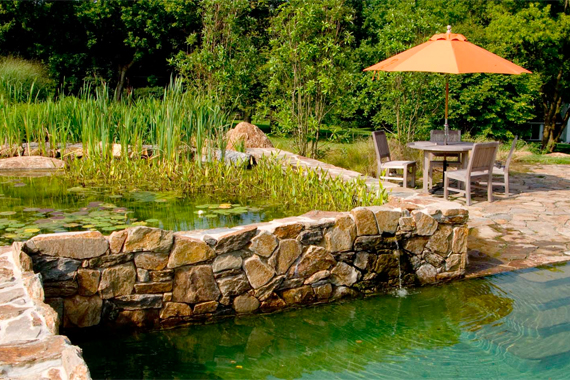 Natural Pool with Connected Areas | Natural Swimming Pools