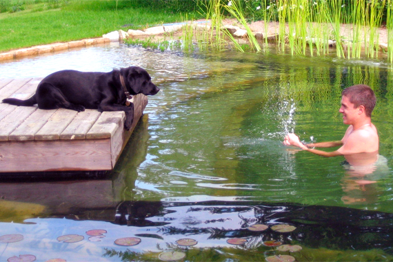 Boy and Dog Playing in Natural Pool | Natural Swimming Pools