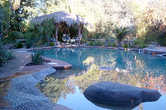 Natural Swimming Pools: 9 Myths Busted