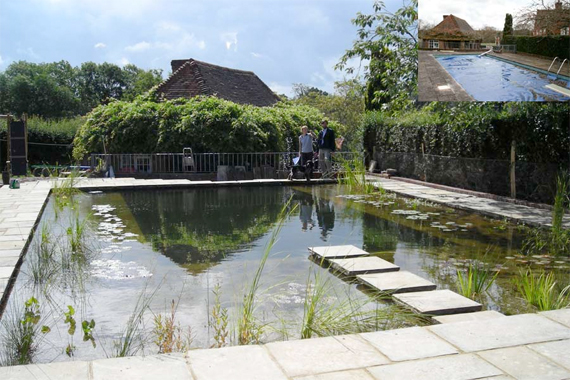 Regular Pool Converted to Natural | Natural Swimming Pools