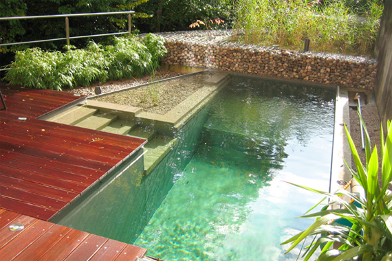Natural Swimming Pools All Natural Swimming Pool Houselogic