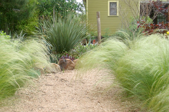 Garden designs with fountain grass pdf for Ornamental grass landscape ideas