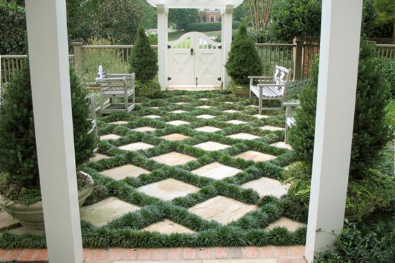 Mondo Grass in Checkerboard | Ornamental Grass Landscaping