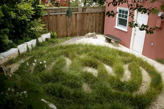Free Form Sedge Grass | Ornamental Grass Landscaping