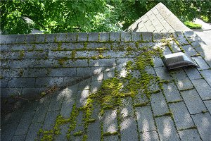 Northwest Outdoor Maintenance Outdoor Maintenance Northwest
