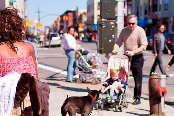 Stroller and a dog on