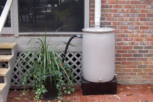 Rain barrel in front of house