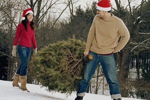 Real Christmas Tree Benefits Real Vs. Fake Christmas Trees