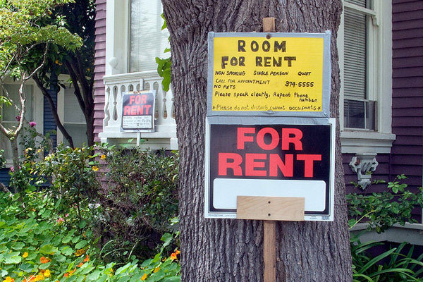 For rent sign attached to a tree