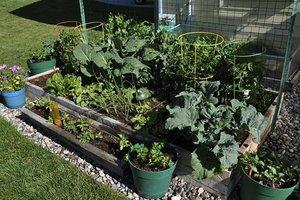Gardening/Farming - Magazine cover