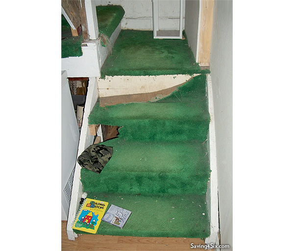 Green Carpet Before