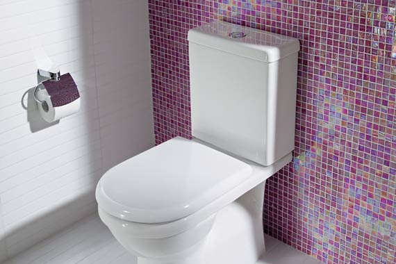 Problems With Low Flush Toilets